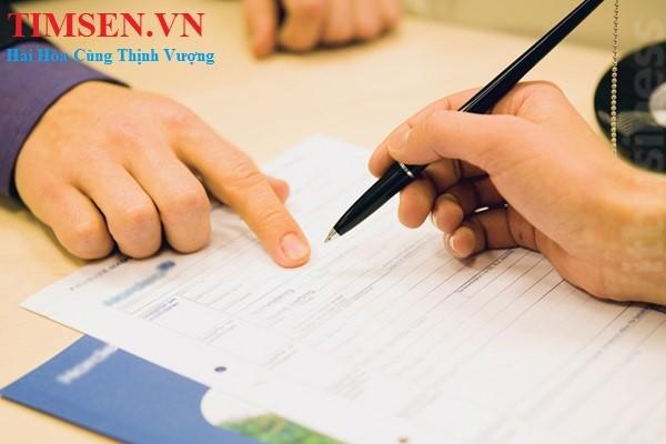 Kiểm tra thông tin và ký hồ sơ thành lập công ty