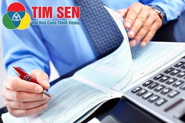 Tim Sen đơn vị dịch vụ báo cáo thuế (kế toán thuế) uy tín TPHCM